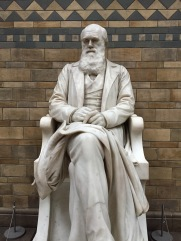 Statue of Charles Darwin at the Natural History Museum