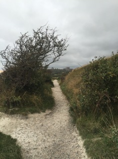 Path at the White Cliffs of Dover